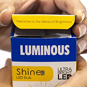 Luminous led bulb