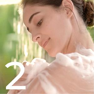 LUX Shower Gel, Freesia Scent & Aloe Vera Bodywash, 245 ml