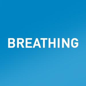 breathwork, breathing techniques, breath, meditation