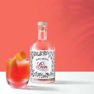 Gin Spritz