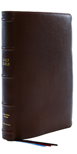 KJV King James Version Brown Leather Large Print Reference Single Column