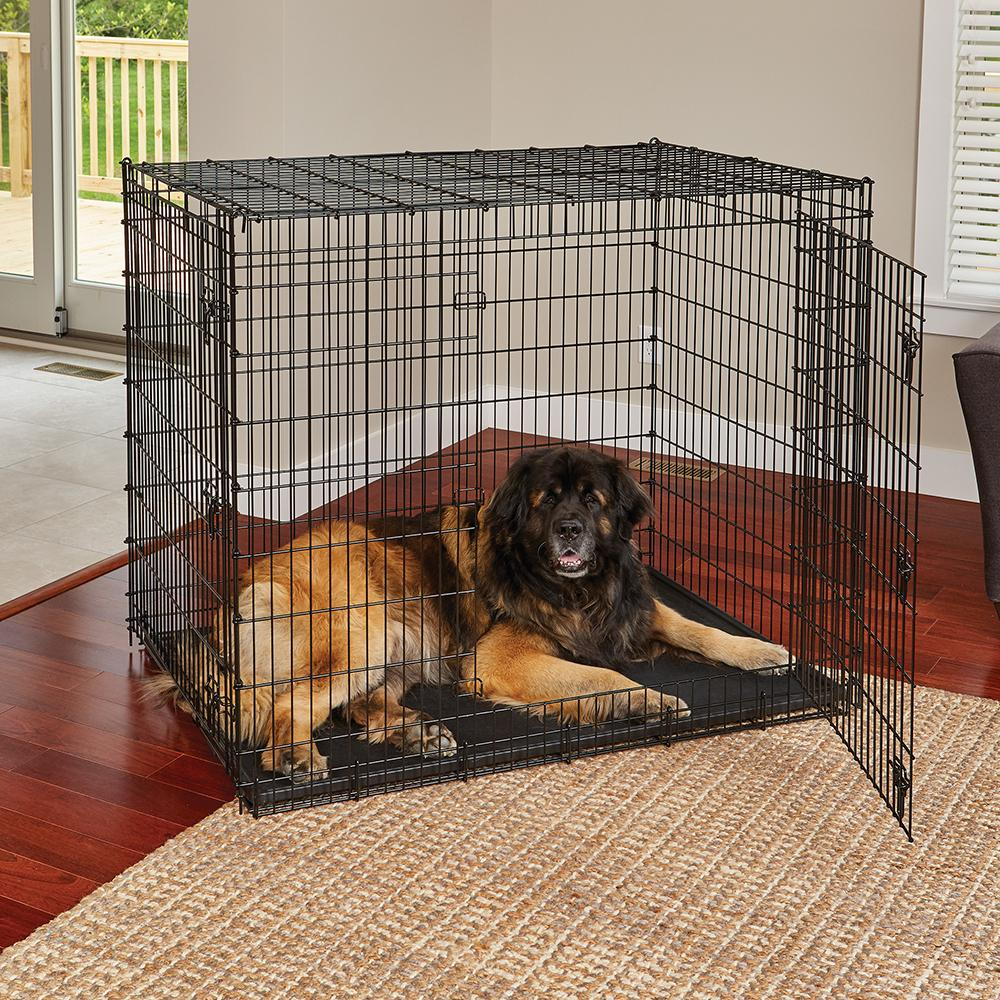 Xxl Dog Crate Ginormous 54 Inch Double Door Dog Crate