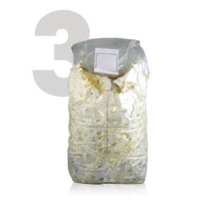 Kit Autocultivo de setas ostra sobre posos de café reciclados de ...