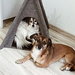 Amazon.com: ANIMALY Tipi es una tienda de campaña para ...