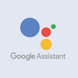 Google Assistant Compatible