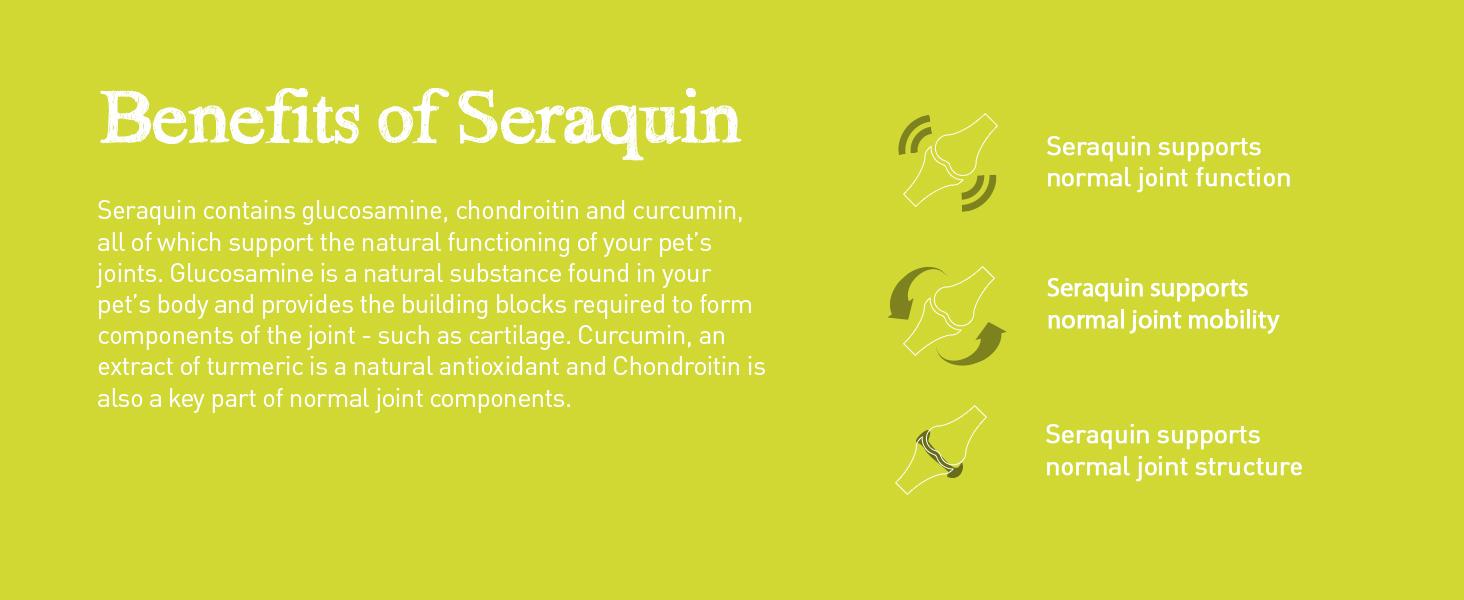 Benefits of Seraquin