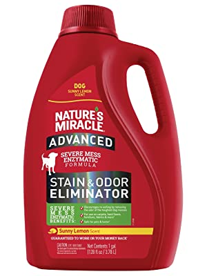advanced stain and odor eliminator pet stains