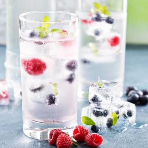 gin eiswürfelform