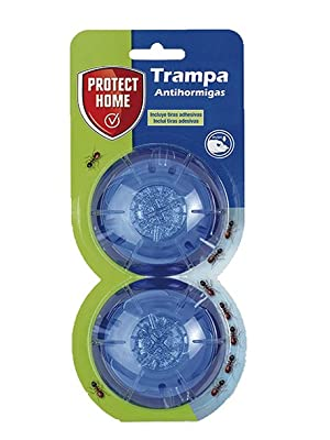 trampa, hormigas, gel, protect, protect home