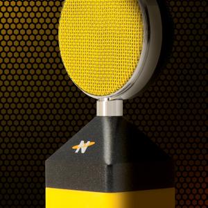 Neat Microphones,Neat,Condenser Microphone,Desktop Microphone,USB Microphone,Podcasting,Recording