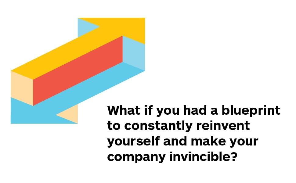 the invincible company, osterwalder, alex osterwalder, alexander osterwalder, strategizer series