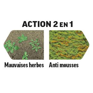 Action 2en1 Mauvaises herbes Anti mousses
