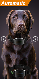 dog training collar dog shock collar puppy shock collar shock collar for dogs