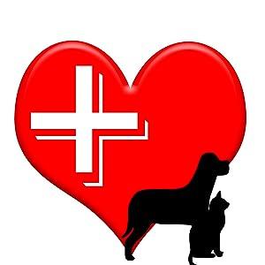 K&H;kandh;KH;quality;veterinarian;vet;energy;efficient;innovation;expert;cat;dog;kitty;puppy