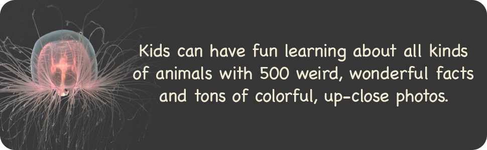 animal books for kids ages 9-12,books for boys age 9 12,girls books ages 9-12,kids books ages 9-12