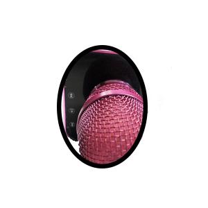 Toy Lab Micrófono Karaoke Oficial La Voz Rosa y Negro, color (SD007)