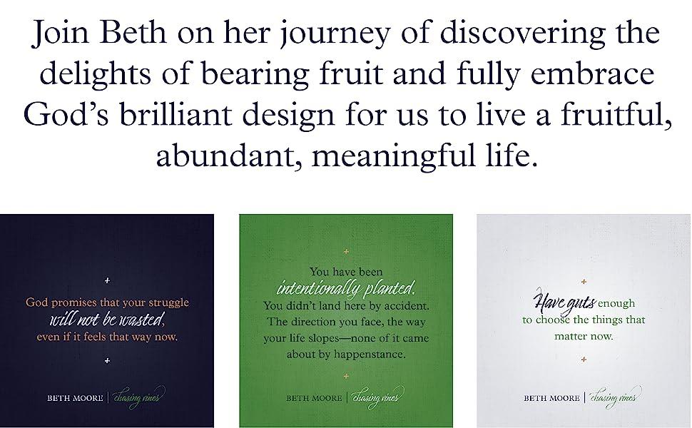 lifeway books women bible study books best bible studies lifeway christian book discipleship book