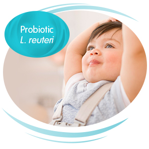 With probiotic L. reuteri to support digestive health