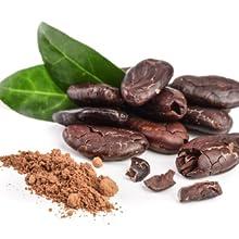 semilla cocoa