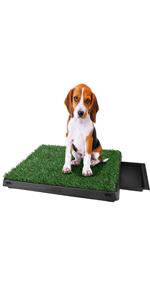 Bacs à litières pour chiens