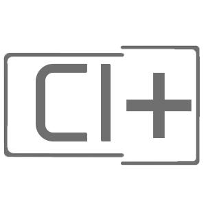 Interface CI+