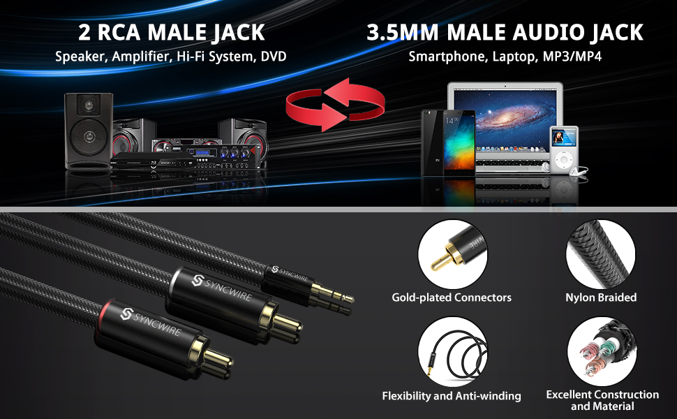 2 RCA Male Jack