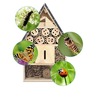 hôtel insectes maison refuge