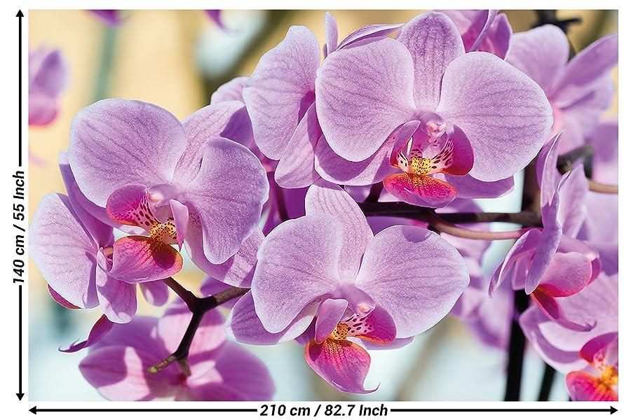 foto de GREAT ART Papier Peint – Orchid Purple – Décoration Murale Fleurs ...