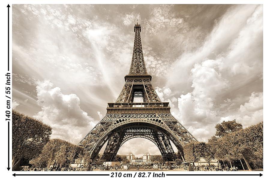 Papier peint photo avec la Tour Eiffel   décoration romantique