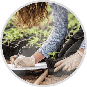 durable engagement agriculture biologique méthode préserve aliments et bienfaits