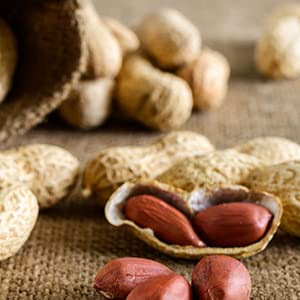 qualité vérifiée aliments ingrédients nutriments naturels nourriture bio pur et savoureux bon