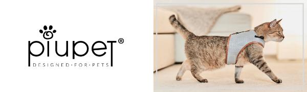 PiuPet® Harnais Chat, Laisse de Chat de 1,20 m, Parure pour Chat sûre, Collier pour Chaton, Taille M
