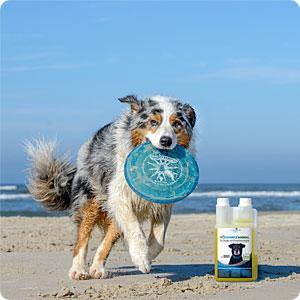 Supprimer les odeurs, nettoyer de façon efficace et facile à base naturelle