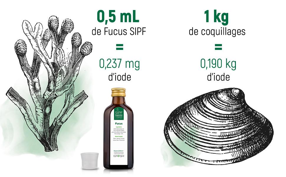 Fucus iode