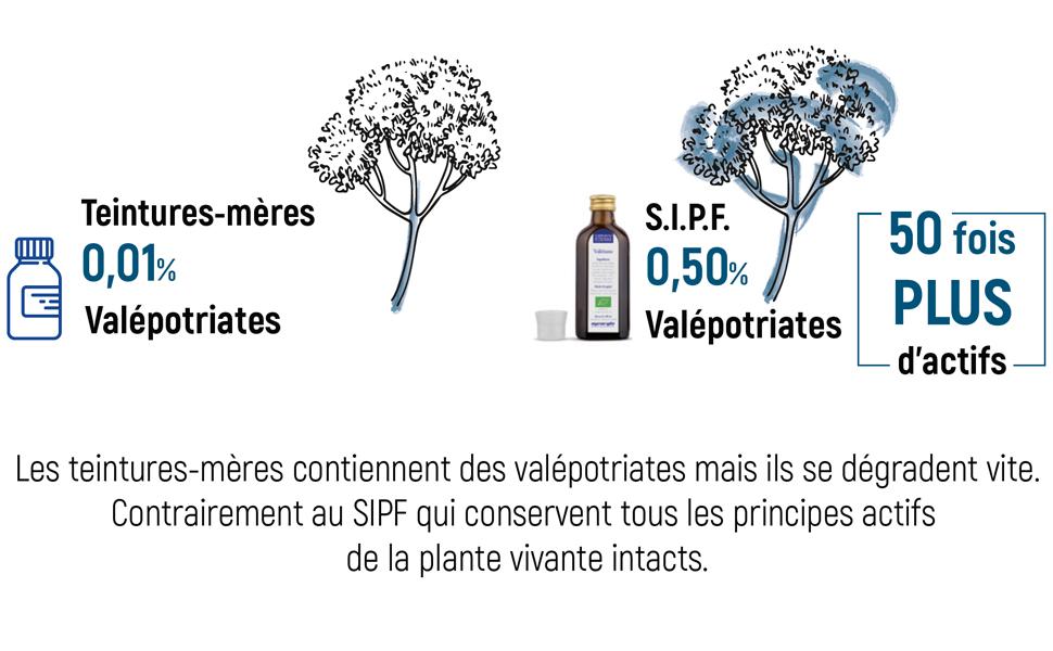 Valériane SIPF