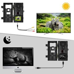 camera detecteur de mouvement animaux