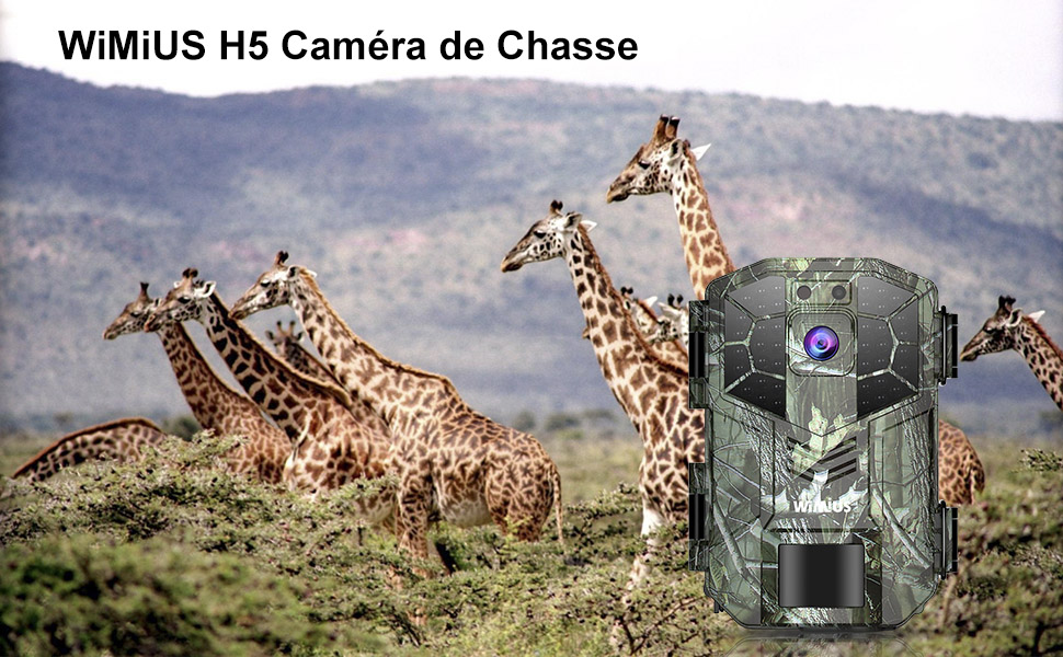 camera nature
