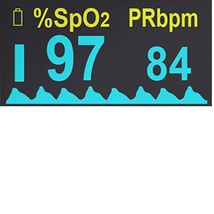 oximeter screen