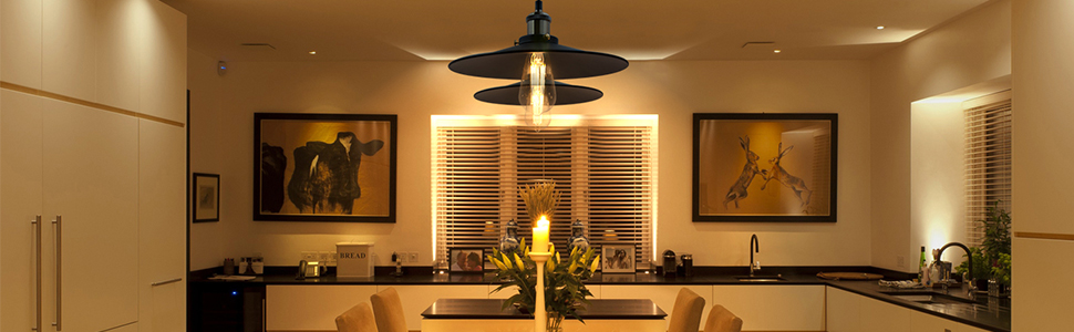 Lampes Abat Jour Plafond Suspension Noire Metal pour Table Salle a Manger Ilot de Cuisine 2 Pack Abat Jour Diamètre 30CM Hauteur de Suspension Maximum