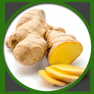 Extrait de Gingembre 600mg - Extrait Haute Concentration 20:1 - Ginger Root - Convient aux ...