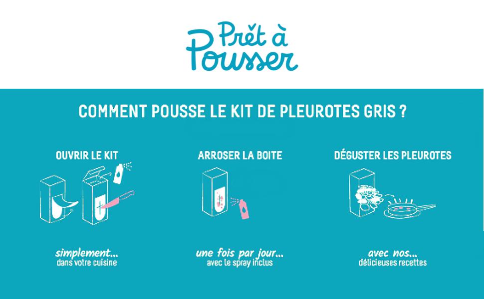 pret a pousser, pleurotes gris, kit a champignons, kit a pleurotes, pleurotes pret a pousser