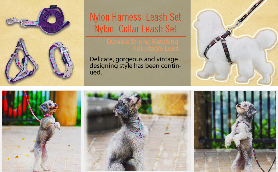ComfortPro Cute Dog Harness & Collar Lead Set