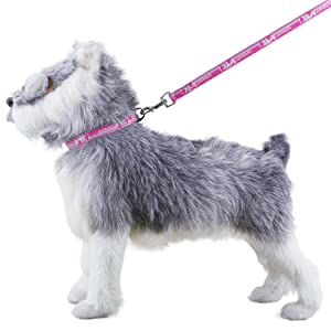 Lightweight Canine Lead Kit