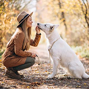 WHY IS IT IMPORTANT TO FEED YOUR DOG GRAIN FREE TREATS