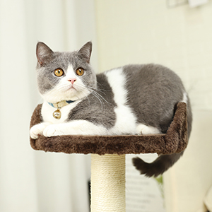 PAWZ Road Cat Tree Scratching Board Sisal Rope Scratching Posts with Perch Pad Cats Toy Activity Centre for Kitten Grey