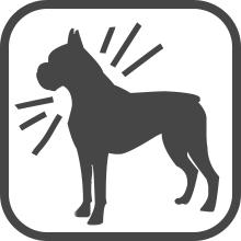 no bark
