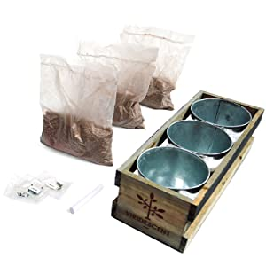 Each herb kit contains