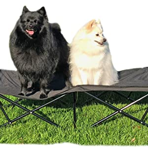 Large raised dog bed