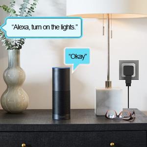 voice control the smart plug