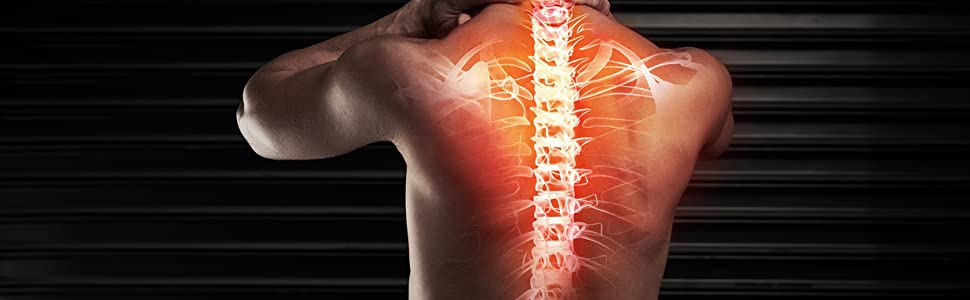 Spinal alignment for a healthy lifestyle